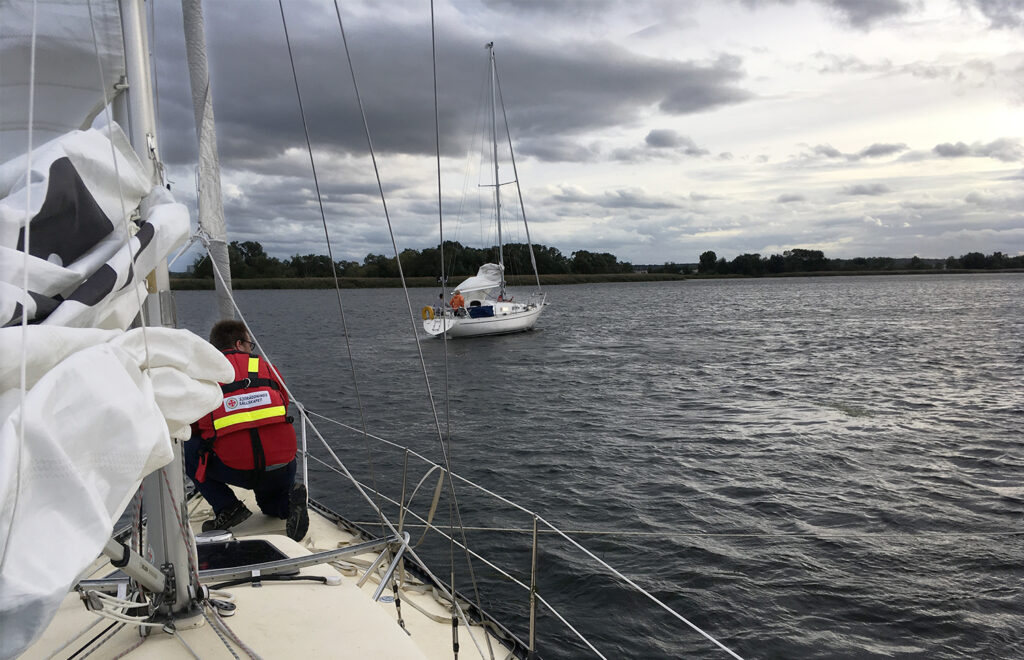 Smalbladig vattenpest segelbåt