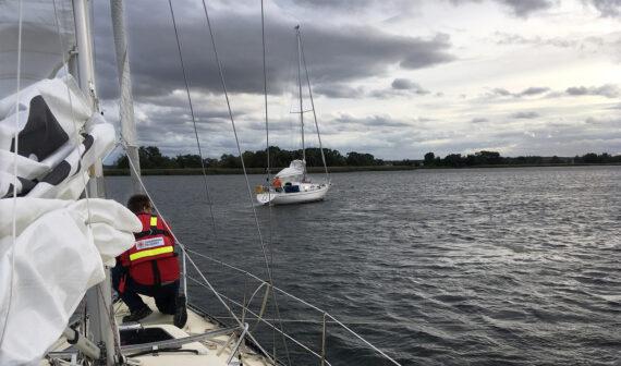 Vattenpest segelbåt