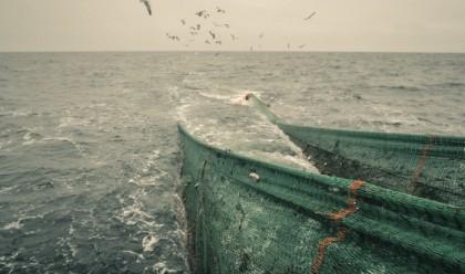 YrkesfiskeHaV