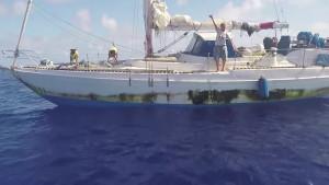Jennifer Appel och hundarna Zeus och Valentine ombord på Sea Nymph, en 37-fots delvis hembyggd Starratt & Jenks.