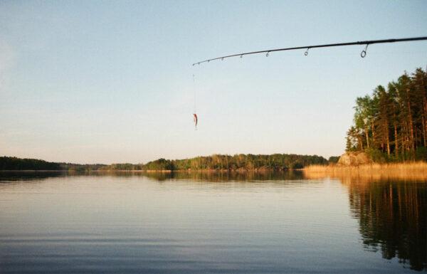 Fiskekartan