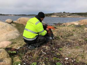 Vårexpeditionens andra dag var också Nordiska kusträddaredagen. Olof Hansson passade på att samla ihop allt skräp vid dagens första nya naturhamn. Bild: Peter Junermark