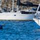 Upplev båtlivet tryggt i coronatider