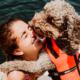 Sommarfaror till sjöss för hunden
