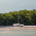 Försvunnen seglare äntligen identifierad