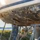 Havstulpanvarning utlyst för Östersjökusten
