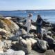 Mystiska stenar på Tärneskär