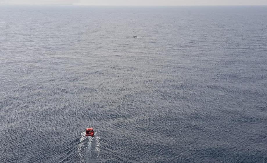 Sjöräddning