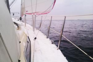 Kattegatts salthalt och närheten till Nordsjön och Golfströmmen ger öppet hav även i köldknäppar. Bild: Fritiof Pontén